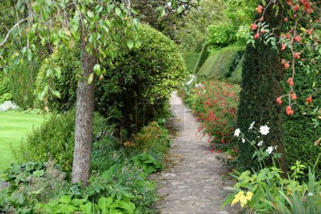 Photo for Park Garden Path with a trees - Royalty Free Image