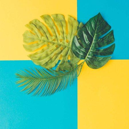 """Photo pour Feuilles tropicales et de palmiers aux vibrantes couleurs vives """"BOLD"""", Concept art - image libre de droit"""