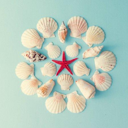 Foto de Dibujos creativos con conchas y estrellas de mar rojas sobre fondo azul pastel - Imagen libre de derechos