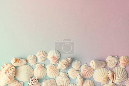 Foto de Patrón de concha creativo en gradiente fondo rosa y azul pastel - Imagen libre de derechos