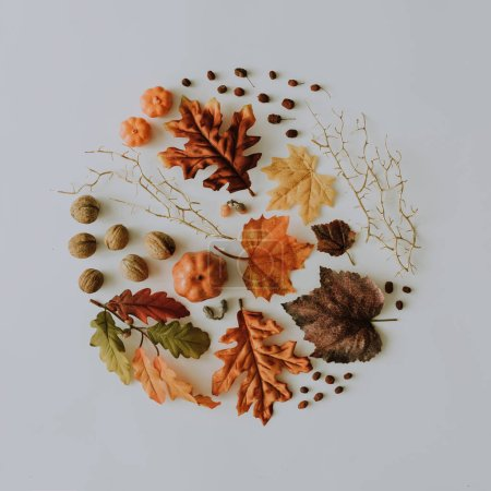 Creative autumn layout made with yellow fallen leaves and nuts. Minimal flat lay. Nature concept.