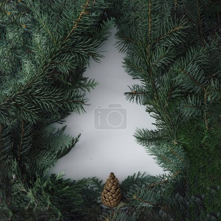 Creative winter layout made with evergreen tree branches, Christmas tree concept