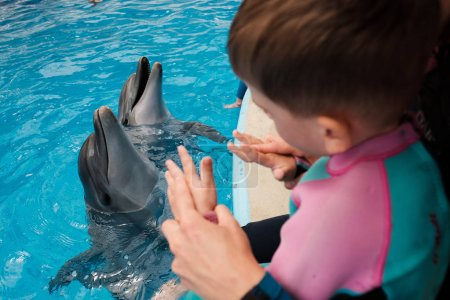 child playing with bottlenose dolphins in blue water. Dolphin Assisted Therapy