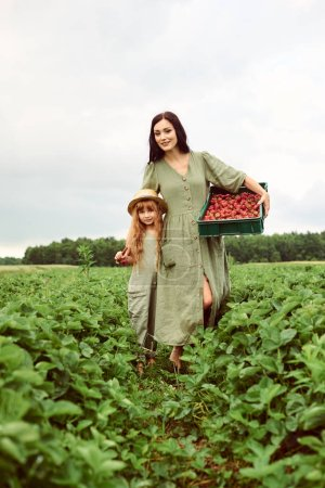 Photo for Beautiful young caucasian mother with her daughter in a linen dress with a basket of strawberries gathers a new crop and walking in a green field - Royalty Free Image
