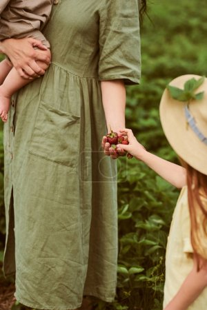 Photo for Beautiful young caucasian mother with her children in a linen dress with a basket of strawberries gathers a new crop and has fun with the children - Royalty Free Image