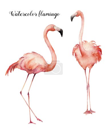 Watercolor two flirting pink flamingos set. Hand painted bright exotic birds isolated on white background. Wild life illustration for design, print, fabric or background.