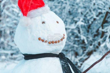 Photo pour Bonhomme de neige avec bonnet de Noel bouchent heure d'hiver - image libre de droit