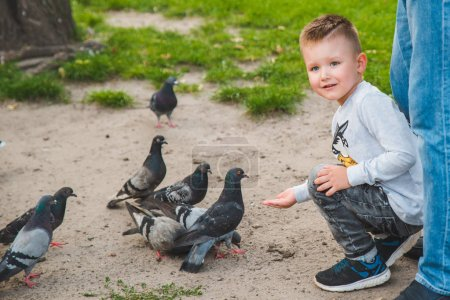 Photo for Little kid feeding doves in park. curiosity boy - Royalty Free Image
