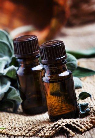 Photo pour Huile essentielle de sauge en bouteille brune sur le sol noir en bois vintage, style rustique, mise au point sélective - image libre de droit