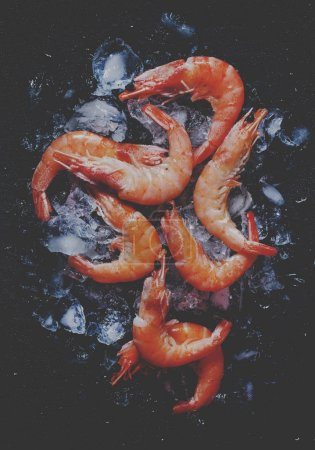 Food flat background, shrimp and ice on dark stone