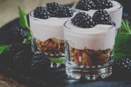 Homemade granola with yogurt and blackberry in glass bowls, healthy breakfast