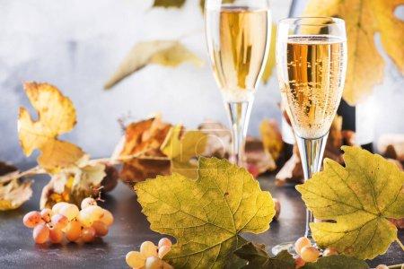 Photo pour Vin de champagne en verre fond. Nature morte d'automne, concept de table de dégustation de vin - image libre de droit