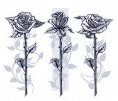 Graphic detailed graphic black and white roses flower with stem and leaves On gray background Vector icon set Vol 13
