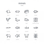 set of 16 animals concept vector line icons such as wasp bulldo