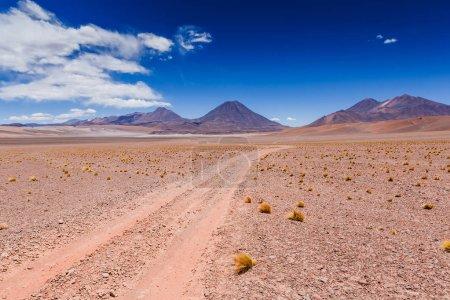 Photo pour Beau scénario dans le désert d'Atacama, Chili du Nord, l'Amérique du Sud - image libre de droit