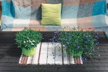 Photo pour Table et canapé avec décoration sur fond bois - image libre de droit