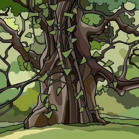 Illustration for Ivy covered large cartoon tree in green forest - Royalty Free Image
