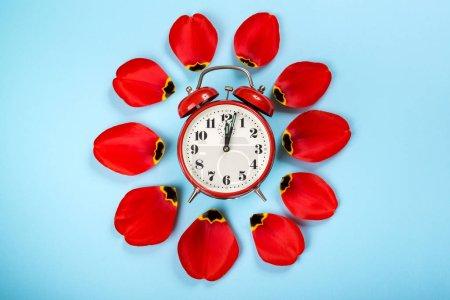 Photo pour Réveil avec pétales de tulipe autour. Style plat, sur fond bleu. Concept d'heure d'été. Printemps en avant. Réveil vintage élégant. Modèle de printemps créatif avec espace pour le texte - image libre de droit
