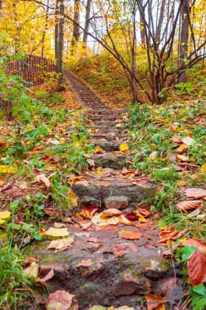 Photo pour Escaliers en pierre extérieurs dans le parc de Kolomenskoye en automne, Moscou, vue inférieure - image libre de droit