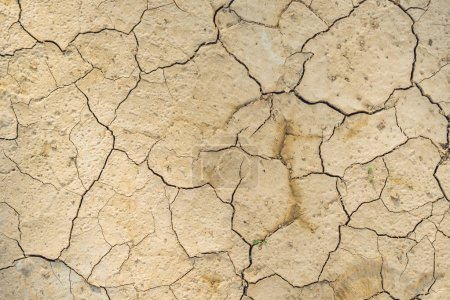 Cracked dry brown soil background, global warming effect.