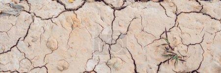 detail of a cracked earth, crack earth, crack soil , global warming. BANNER, long format