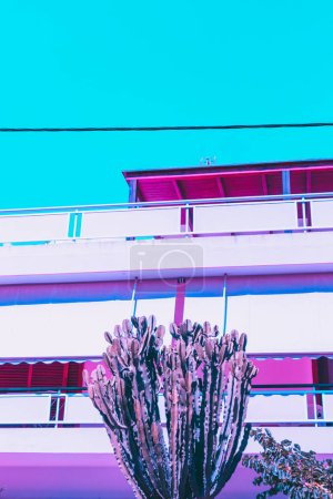 cactus and hotel. turquoise sky. minimal and surrealism