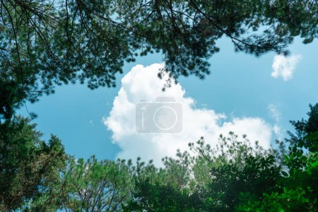 Photo for Lovely day have a blue sky and beautiful Cloud, cloud background concept - Royalty Free Image