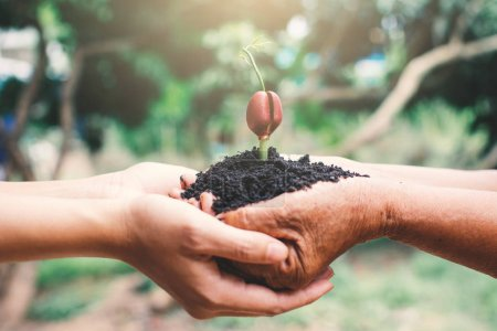 Photo for Human hand planting sprout in nature, Save and protect environment. - Royalty Free Image