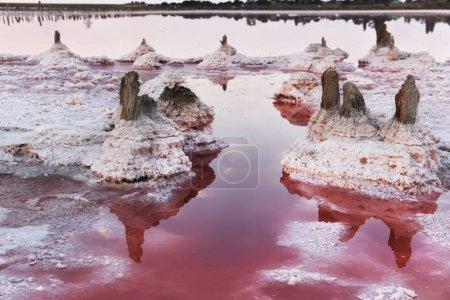 Photo pour Vieux poteaux en bois laissés après l'extraction du sel sur la rive d'un lac salé. Barres dans le sel sur un lac rose salé avec l'eau rose lumineuse. Réflexion des nuages dans la surface de l'eau. - image libre de droit