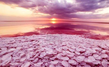 Photo pour Lac de sel unique avec l'eau rose et le sel au coucher du soleil. Magnifique reflet des nuages dans l'eau rose d'un lac de sel. - image libre de droit