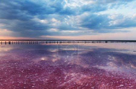 Photo pour Lac de sel unique avec l'eau rose et le sel au coucher du soleil. Lignes de colonnes en bois couvertes de cristaux de sel. - image libre de droit