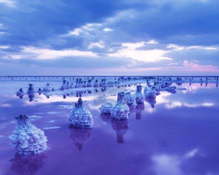 Photo pour Une image fantastique d'un lac rose salé avec des rangées de colonnes de sel dans des cristaux de sel après coucher du soleil. Longue exposition, crépuscule. - image libre de droit