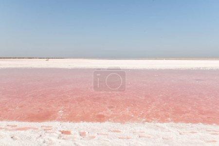 Photo pour Lac rose avec le sel. Paysage incroyable d'un lac avec l'eau rose, traces dans le sel sur le rivage. - image libre de droit