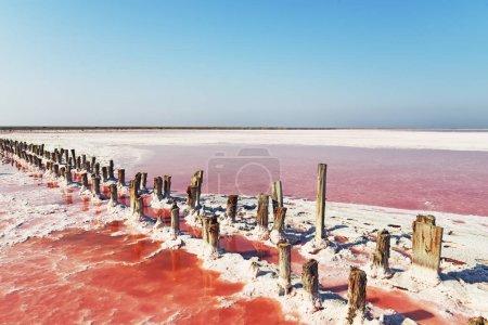 Photo pour Lac de sel unique avec l'eau rose et le sel. Lignes de colonnes en bois couvertes de cristaux de sel. - image libre de droit