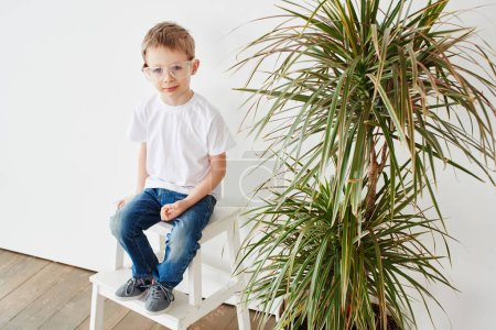 Portrait of pensive little guy in glasses sitting on chair near plant on white background