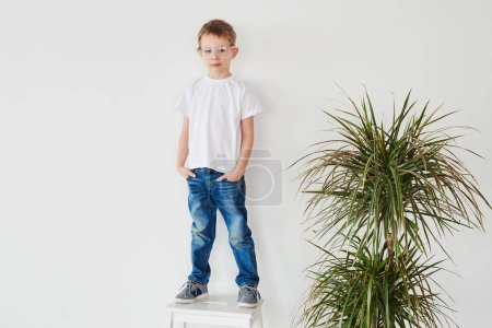 Portrait of pensive little guy standing on chair near plant on white background