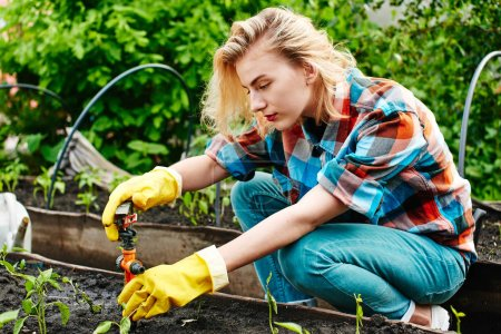 woman setting device watering plants in flower bed
