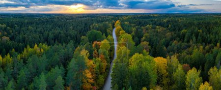 Photo pour Beautiful autumn landscape. Panorama view of forest and road from above. Latvian nature. - image libre de droit