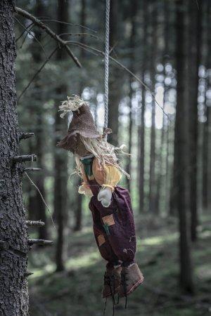 Photo pour Image sinistre avec un épouvantail pendu avec une corde blanche à un arbre sans feuilles, dans une forêt sombre. - image libre de droit