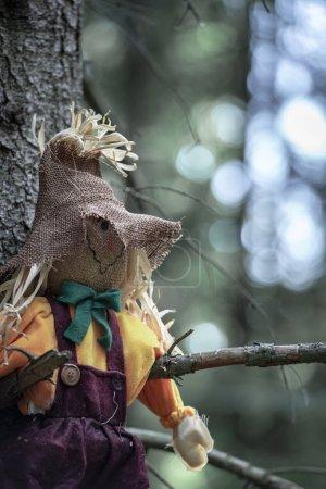 Photo pour Gros plan avec un épouvantail, suspendu à gauche entre deux branches d'arbres, sans feuilles, dans les bois sombres. Un concept pour Halloween . - image libre de droit