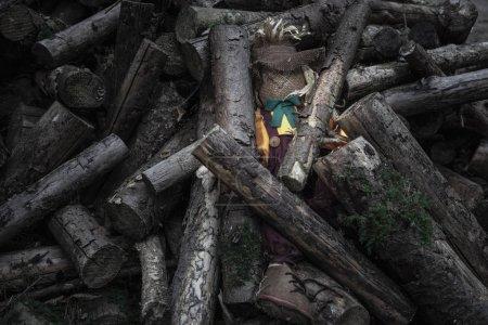 Photo pour Poupée en peluche, un épouvantail, cachée et abandonnée entre des bûches de bois, à faible luminosité . - image libre de droit
