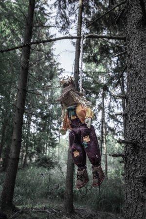 Photo pour Image sinistre avec un épouvantail minable, pendu avec une corde à une branche d'arbre, dans une forêt sombre. Un contexte pour Halloween . - image libre de droit