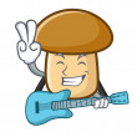 With guitar porcini mushroom mascot cartoon vector...