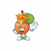 King shipova fruit cartoon on white background