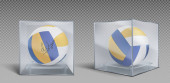 Volleyball balls trophy in glass or plastic case