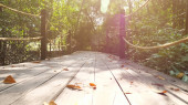 person walks along bridge among tropical plants in jungle