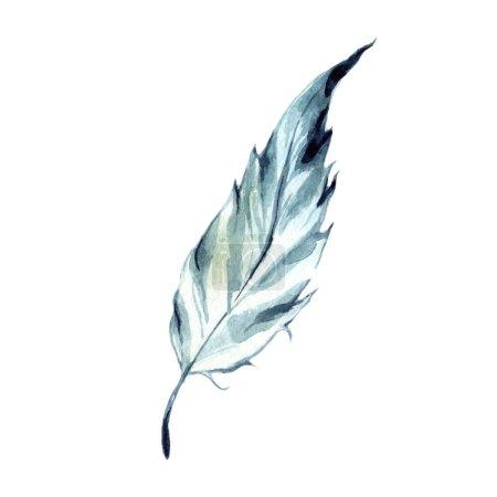 Photo pour Plume d'oiseau aquarelle de l'aile isolée. Plume Aquarelle pour fond, texture, motif enveloppant, cadre ou bordure . - image libre de droit