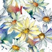 """Постер, картина, фотообои """"Белые ромашки цветок. Ботанический цветочные цветок. Бесшовный фон узор. Обои для рабочего стола ткань печати текстуры. Акварель Уайлдфлауэр для фона, текстуру, узор оболочки, рамки или границы"""""""