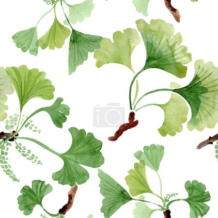 Photo for Ginkgo biloba green leaves. Leaf plant botanical garden floral foliage. Watercolor illustration set. Watercolour drawing fashion aquarelle. Seamless background pattern. Fabric wallpaper print texture. - Royalty Free Image