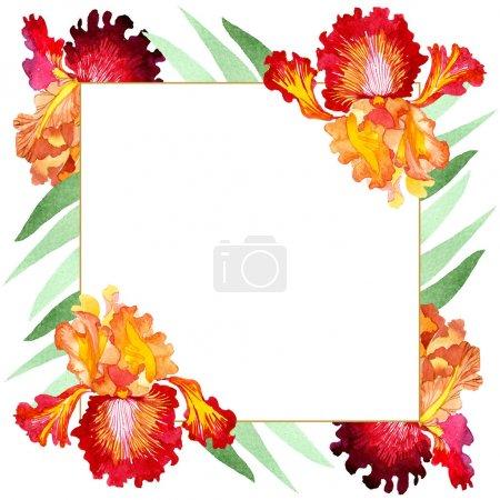 Photo pour Red Bold rencontre des fleurs botaniques florales d'iris. Fleur sauvage de neige sauvage de feuille de source d'isolement. Ensemble d'illustration de fond d'aquarelle. Aquarelle de dessin à l'aquarelle. Carré d'ornement de bordure de cadre. - image libre de droit